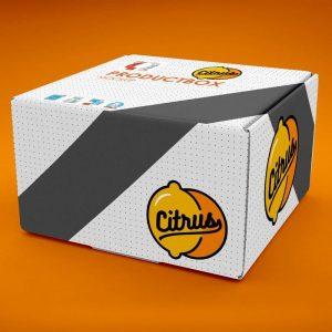 موکاپ جعبه کادو یا بسته بندی